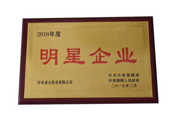 title='2018年度明星企业'