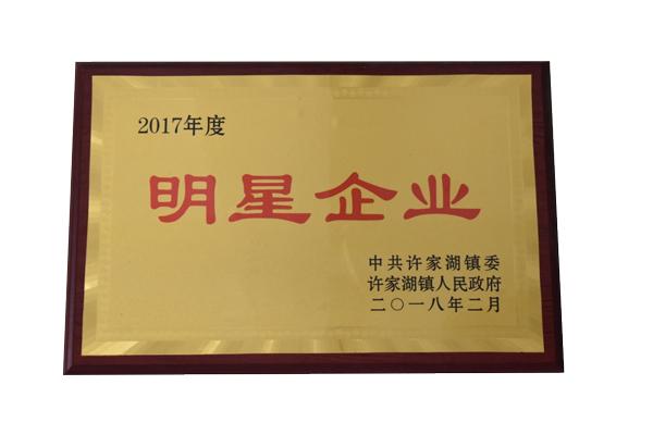 title='2017年度明星企业'