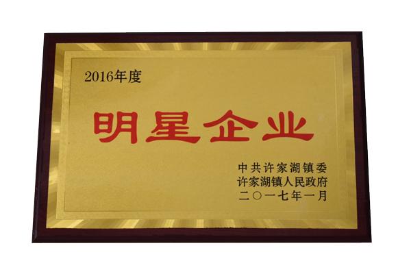 title='2016年度明星企业'