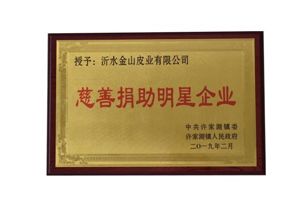 title='慈善捐助明星企业'